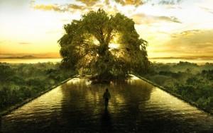 arbre_de_vie_002
